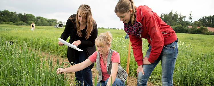Agrar Studieren